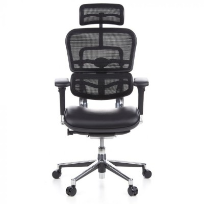 Ofisinė kėdė Ergohuman Luxury